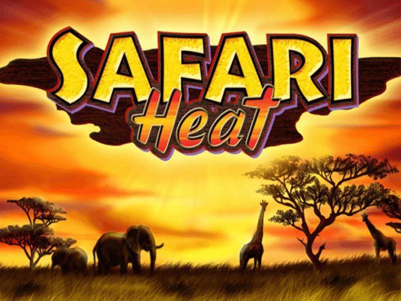 Win in Safari Heat Slot Gambling Game Online